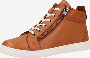 COSMOS COMFORT High-Top Sneakers in Brown