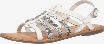 KICKERS Sandale in grau / weiß, Produktansicht