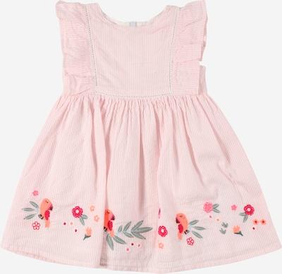 STACCATO Robe en mélange de couleurs / rose / blanc, Vue avec produit
