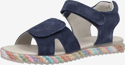 RICHTER Sandalen in de kleur Donkerblauw / Gemengde kleuren, Productweergave