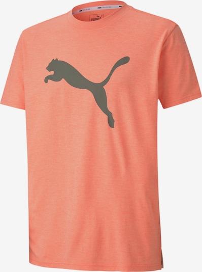 PUMA T-Shirt in neonorange, Produktansicht