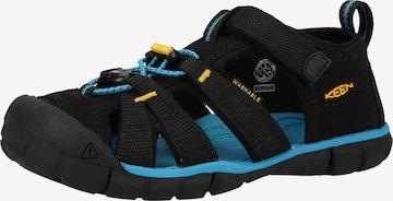 KEEN Sandale in Schwarz