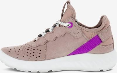 ECCO Sneaker in braun / altrosa / schwarz, Produktansicht