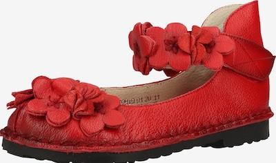 Laura Vita Ballerina 'Hocobio' in rot, Produktansicht