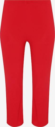 Yoek Leggings ' Dolce ' in Red, Item view