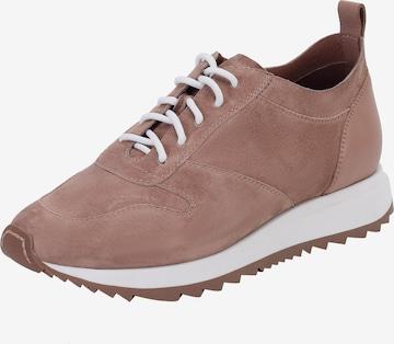 Ekonika Sneakers in Brown