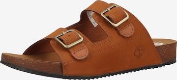 Pantoufle TIMBERLAND en marron