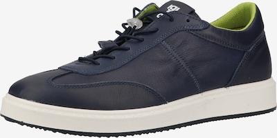 IGI&CO Sneaker in navy / weiß, Produktansicht