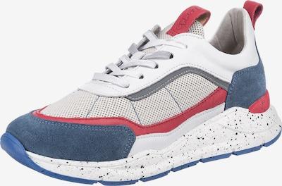 Froddo Sneakers in mischfarben, Produktansicht