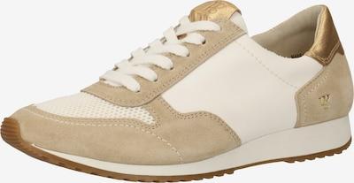 Paul Green Baskets basses en beige / or / blanc, Vue avec produit