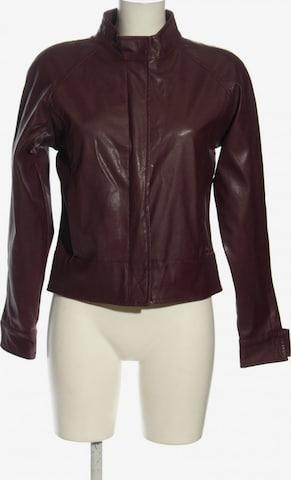 PUR Jacket & Coat in L in Brown
