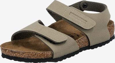 BIRKENSTOCK Sandale 'Palu' in oliv, Produktansicht