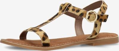 MEXX Sandale 'GABIANO' in braun / hellbraun / schwarz, Produktansicht
