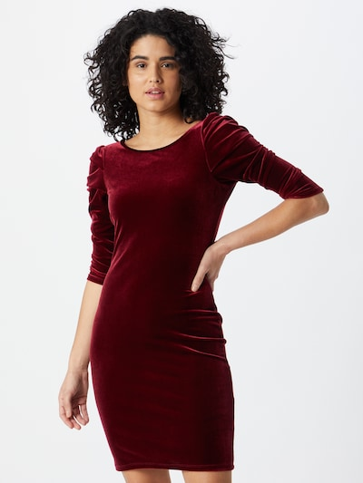Dorothy Perkins Kleid in weinrot, Modelansicht
