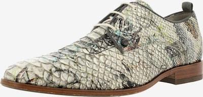 Rehab Chaussure à lacets en mélange de couleurs / blanc, Vue avec produit