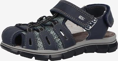 PRIMIGI Sandalen in nachtblau / smaragd / schwarz / weiß, Produktansicht