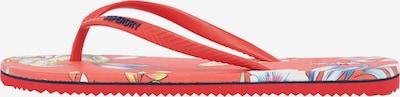 Superdry Zehentrenner in navy / rot, Produktansicht