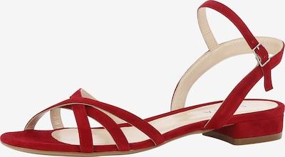 EVITA Sandale 'SALVINA' in rot, Produktansicht