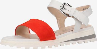 PETER KAISER Sandale in rot / weiß, Produktansicht