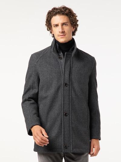 PIERRE CARDIN Winterjas in de kleur Donkergrijs, Modelweergave