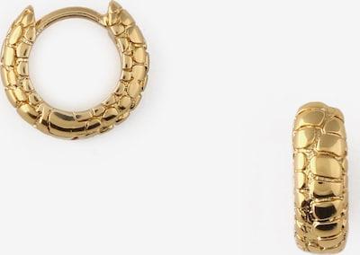 Orelia Ohrringe in gold, Produktansicht