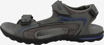 Sandales GEOX en gris