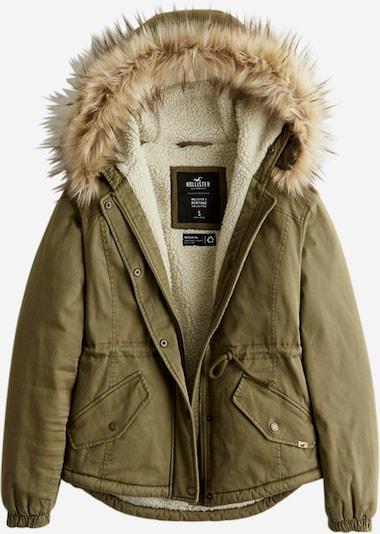 HOLLISTER Jacke in grün, Produktansicht