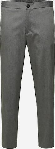 Pantalon chino SELECTED HOMME en gris
