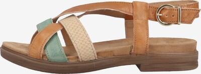 IGI&CO Sandalen in beige / braun / jade, Produktansicht