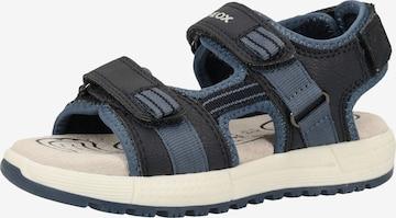 GEOX Sandale 'Alben' in Blau