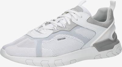 GEOX Sneaker in hellgrau / weiß, Produktansicht