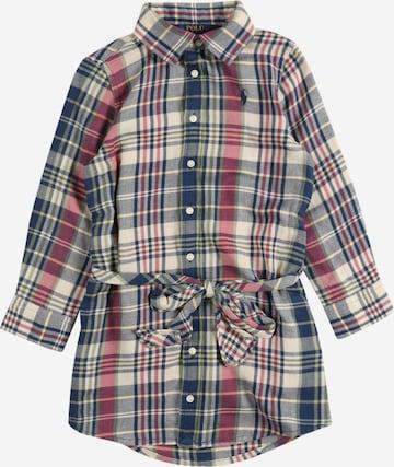 Polo Ralph Lauren Dress in Mixed colours