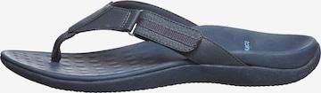 SCHOLL T-Bar Sandals 'Ryder' in Blue