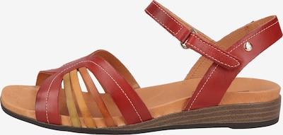 PIKOLINOS Sandalen in beige / rot, Produktansicht