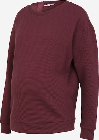 Noppies Sweater 'Groves' in Purple
