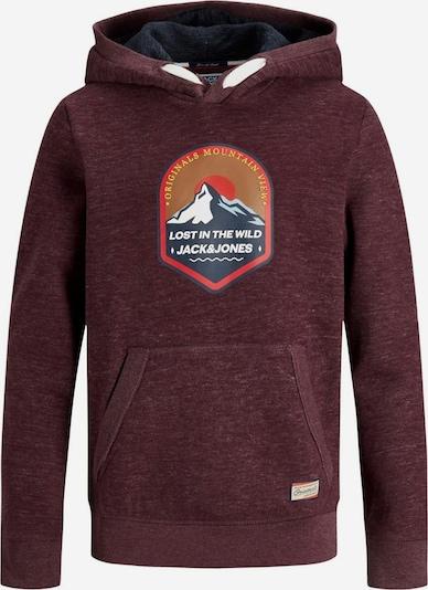 Jack & Jones Junior Sweatshirt 'River Creek' in opal / goldgelb / neonorange / weinrot / weiß, Produktansicht