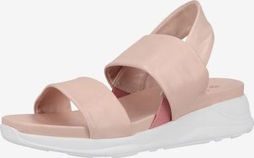 ILC Sandalen in Pink