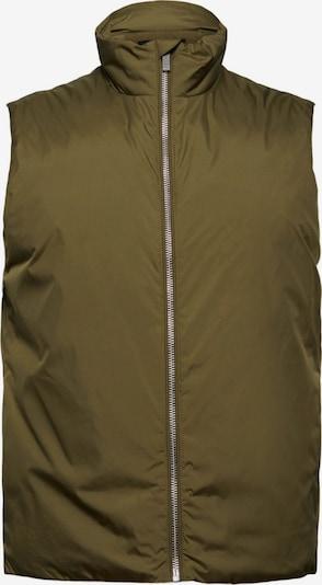 Esprit Collection Bodywarmer in de kleur Groen, Productweergave