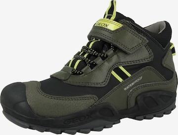 GEOX Boots in Grün