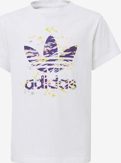 ADIDAS ORIGINALS Shirt in opal / gelb / dunkellila / hellpink / weiß, Produktansicht