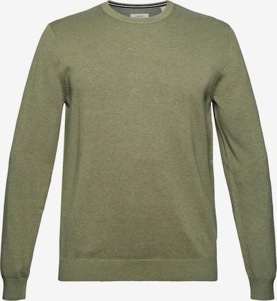 ESPRIT Sweatshirt in grün, Produktansicht