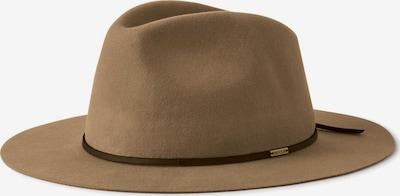 Brixton Hat 'WESLEY' i khaki / mørkegrøn, Produktvisning