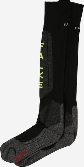 FALKE Sportsocken in dunkelgrau / schilf / rot / schwarz, Produktansicht