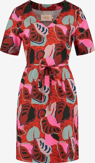 Shiwi Kleita 'Ibiza', krāsa - jauktu krāsu, Preces skats