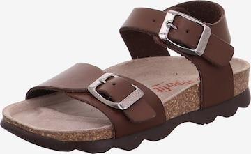 SUPERFIT Sandale in Braun
