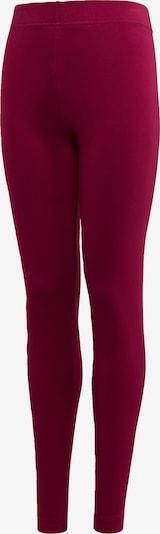 ADIDAS PERFORMANCE Leggings in orange / rubinrot, Produktansicht