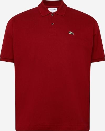 LACOSTE T-Shirt en vert / bordeaux / blanc, Vue avec produit