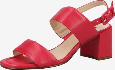 Högl Sandale in pitaya, Produktansicht