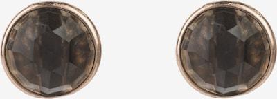 Latelita Ohrringe in braun, Produktansicht
