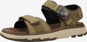 CLARKS Sandale in Grün